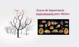Ácaros de importancia cuarentenaria para México