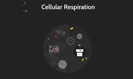 Copy of Cellular Respiration Experiment