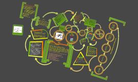 Copy of Copy of Copy of Curriculum Vitae