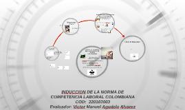 Copy of INDUCCION DE LA NORMA DE COMPETENCIA LABORAL COLOMBIANA