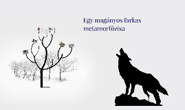Egy magányos farkas metamorfózisa