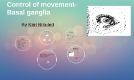 Copy of Basal ganglia