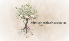 Adrenal Cortical Cancer