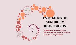 ENTIDADES DE SEGUROS Y REASEGUROS
