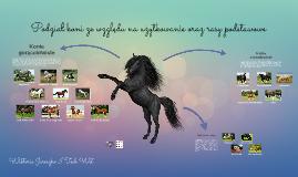 Podział koni ze względu na użytkowanie oraz rasy podstawowe