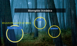 Bioregión Oceánica
