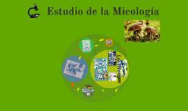 Estudio de la Micología