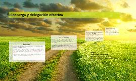 Copy of Liderazgo y delegación efectiva