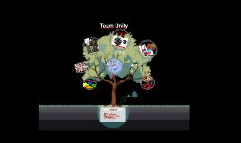 NAWDP Team Unity/ Conflict Management