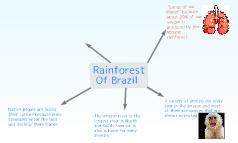 Rainforests of Brazil