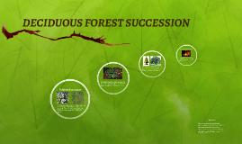 DECIDUOUS FOREST SUCCESSION