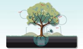 Terra Madre - Feeding Cities