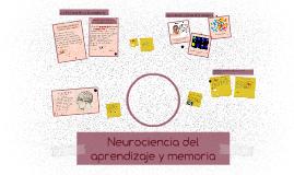 Neurociencia del