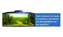 O que é amônia e nitrito no aquário?