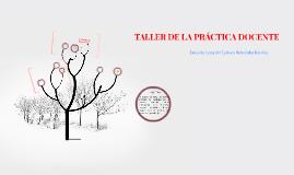TALLER DE LA PRÁCTICA DOCENTE