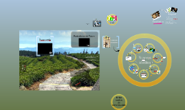 Copy of Lo digital en la comunicación