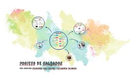 Copy of Projeto de Calçados