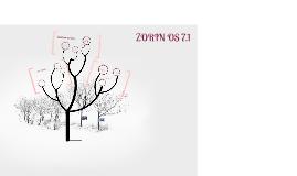 Copy of ZORIN OS 7.1