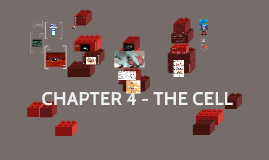 CHAPTER 4 - THE CELL