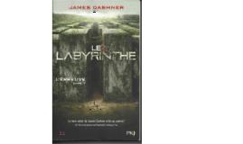 Le labyrinthe par Romain