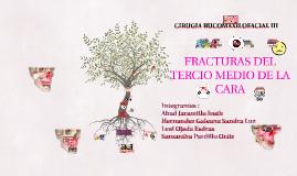 Copy of FRACTURAS DEL  TERCIO MEDIO DE LA CARA