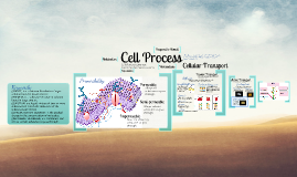 Copy of Cellular Process