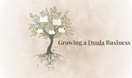 Building a Doula Business
