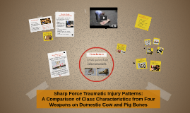 Sharp Trauma Classification Presentation