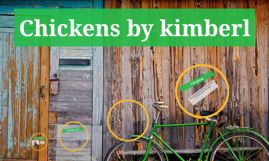 Chickens by kimberl