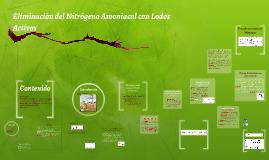 Copy of SISTEMA DE LODOS ACTIVADOS PARA LA REDUCCION DE NITROGENO AM
