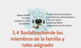 5.4 Socialización de los miembros de la familia y roles asig