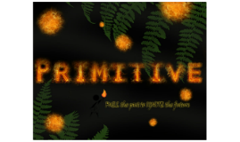 About Primitive
