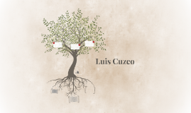 Luis Cuzco