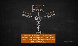 Sistema Automatizado para la siembra de semillas de hortaliz