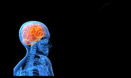 Copy of Serão os Neurocientistas os Psiquiatras do Século XXI