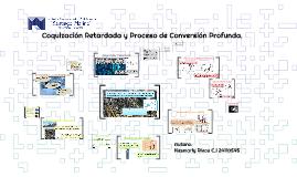 Coquización Retardada yProceso de Conversión Profunda.
