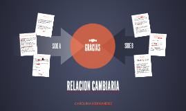 RELACION CAMBIARIA