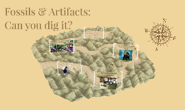 Fossils & Artifacts:  Can you dig it?
