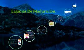 Copy of Lagunas De Maduracion.