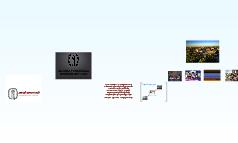 Residential Life Programming Model