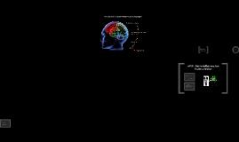 Wie steuert unser Gehirn Bewegungen?