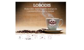 Comment orienter la stratégie communication de LOBODIS pour
