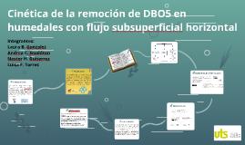 Cinética de la remoción de DBO5 en humedales con flujo subsu