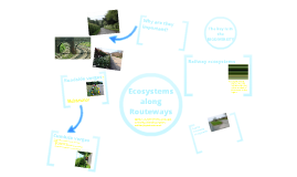 Copy of Copy of Ecosystems along Routeways
