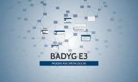 BADYG E3