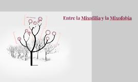 Copy of Entre la Mixofilia y la Mixofobia