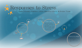 Responses to Stress