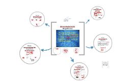 Copy of Sensomotorische Regelkreise und posturale Kontrolle