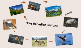 The Canadian Nature