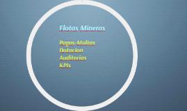 Flotas Mineras